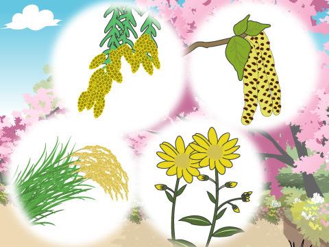 花粉症を起こしやすい植物