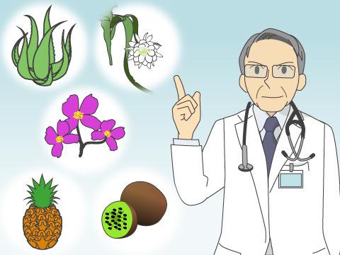 刺激性接触皮膚炎を起こしやすい植物