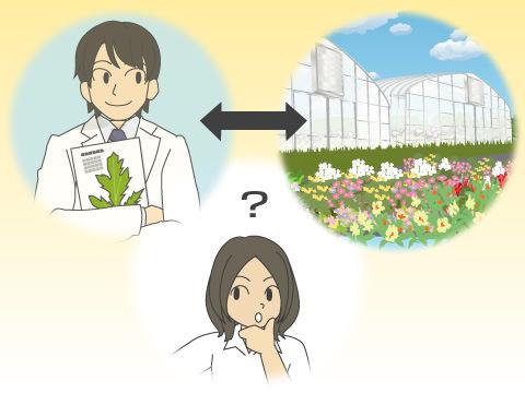 植物園での活動