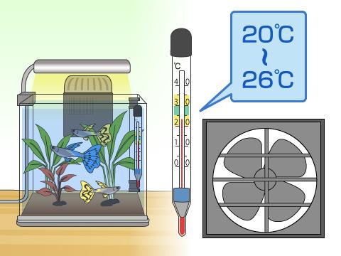 季節による水温管理で注意すること