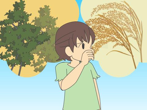 人間が花粉に対して反応するアレルギー反応が、花粉症