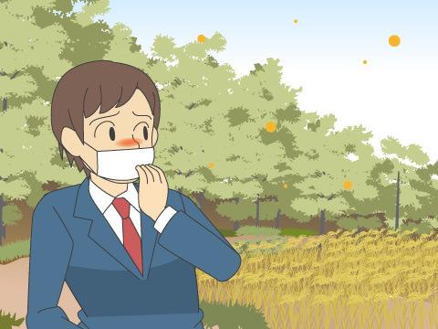 夏の花粉症