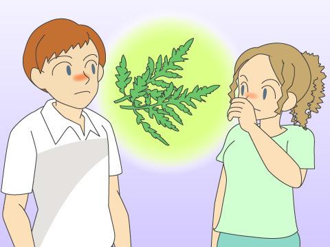 アメリカの花粉症