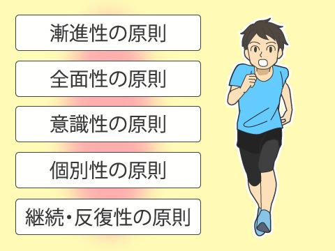 トレーニングの5大原則