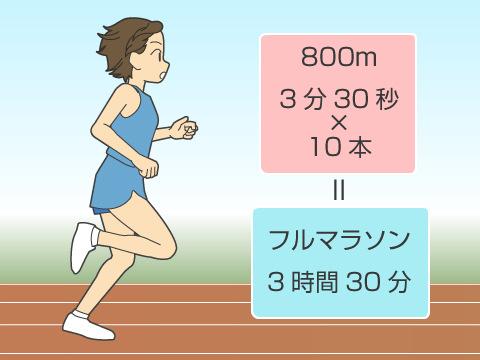 ヤッソ800