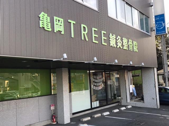 亀岡TREE鍼灸整骨院